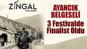 Ayancık Zingal Belgeseli finalist oldu