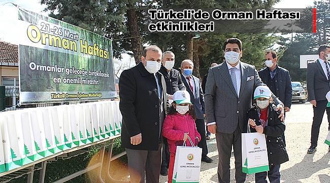 Türkeli'de Orman Haftası etkinlikleri
