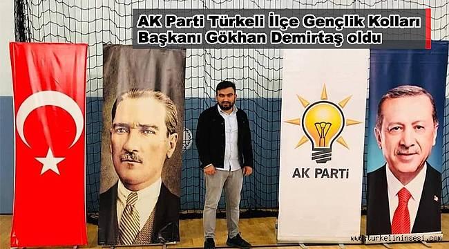AK Parti Türkeli Gençlik Kolları Başkanı Demirtaş oldu