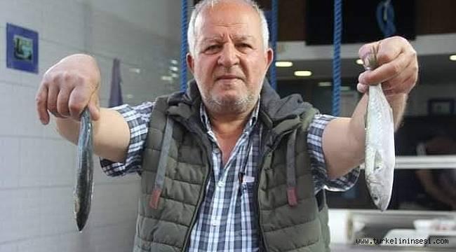 Marmara'daki müsilajdan kaçan çinekop Türkeli'de tutuldu