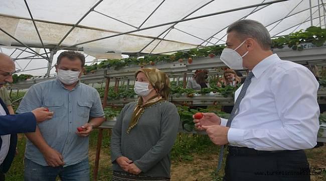 Yılın mikro girişimcisi seçilen Sinoplu Alime'ye ziyaret