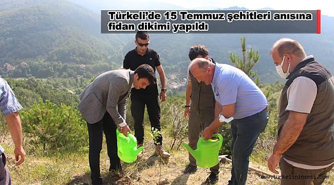 Türkeli'de 15 Temmuz şehitleri anısına fidan dikildi