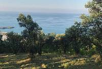 Türkeli'de sahibinden satılık deniz manzaralı arsa